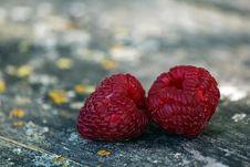 Free Macro Photography Of Raspberries Royalty Free Stock Image - 126180946
