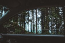 Free Scenic View Of Forest From Car Royalty Free Stock Photos - 126181018
