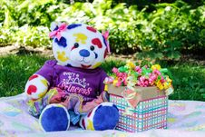 Free White, Yellow, Red, And Blue Teddy Bear Beside Gift Box Royalty Free Stock Photos - 126181358