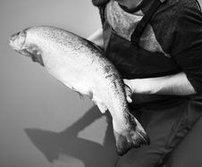 Free Grayscale Photo Of Man Holding Milkfish Royalty Free Stock Photography - 126181487