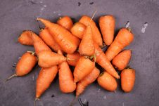 Free Bunch Of Carrots Stock Photography - 126185532