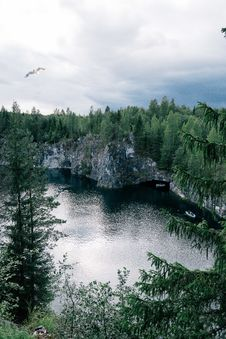 Free Birds Eye Photography Of Body Of Water Between Tall Trees Stock Image - 126187041