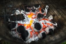 Free Selective Focus Photography Of Burnt Charcoal Stock Photos - 126187053
