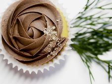 Free Cupcake With Chocolate Icing Royalty Free Stock Photography - 126187437