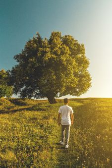 Free Man In White T-shirt And Gray Denim Jeans Outfit On Green Grass Field Stock Photo - 126188060