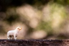 Free Shallow Focus Photography Of White Sheep Figure Stock Images - 126188134