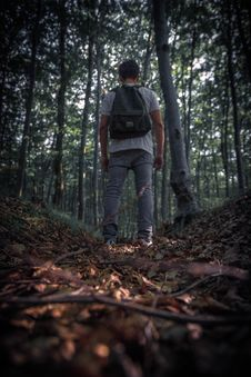 Free Man Standing Near Trees Stock Photography - 126189982