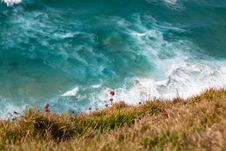 Free Top View Photography Of Hill With Red Flowers Across Beach Waves Stock Photography - 126190692