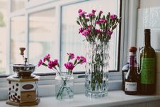 Free Potted Pink Petaled Flowers Near Bottles Beside Window Royalty Free Stock Photos - 126190878