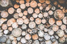 Free Photo Of A Pile Of Logs Stock Image - 126191081