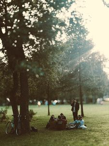 Free People Under Green Leaf Trees On Green Grass Royalty Free Stock Images - 126192819