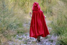 Free Girl With Red Hood Walking On Rocky Path Between Grasses Stock Image - 126193491