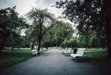 Free White Wooden Benches On Park Royalty Free Stock Images - 126193759