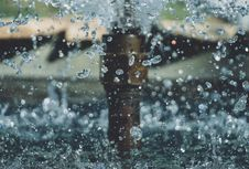 Free Photo Of Water Drops Stock Photography - 126194142