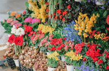 Free Assorted Flowers On Crates Stock Photography - 126194162