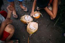 Free Three People Squatting Beside Coconut Fruit On Ground Stock Images - 126194164