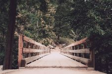 Free Brown Wooden Bridge With Trees Landscape Photography Stock Photos - 126194303