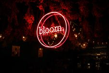 Free Red Bloom Neon Light Signage Royalty Free Stock Photo - 126194955
