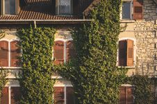 Free Brown House With Green Plants Stock Image - 126195851
