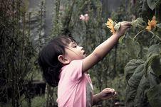 Free Girl Picking Up Flowers Royalty Free Stock Image - 126196126