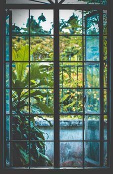 Free Open Black Metal Framed Clear Glass Window Near Plants Royalty Free Stock Image - 126246156