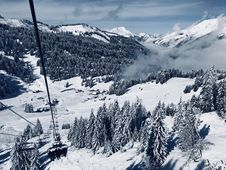 Free Snow Covered Pine Trees Below Running Cable Car During Day Stock Photo - 126404520
