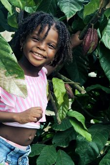 Free Girl Smiling Under Green Cacao Tree Royalty Free Stock Images - 126652809