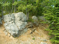 Free Stone In Forest Stock Photos - 1277723