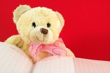 Free Teddy Bear 2 And Book Stock Image - 1273691