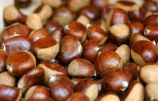 Free Chestnuts Royalty Free Stock Photography - 1273767