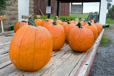 Pumpkins At A Farm Stand Royalty Free Stock Images
