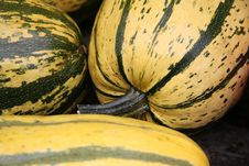 Free Pumpkin Stock Images - 1275474