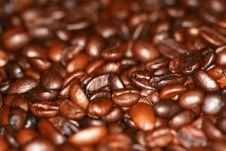 Macro Photo Of Coffee Beans Stock Photography