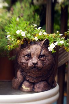 Free Happy Garden Cat Stock Image - 1277261