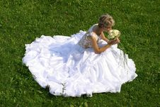 Free Beautiful Bride Royalty Free Stock Images - 1279569