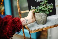 Free Person Holding Concrete Pot With Plant Royalty Free Stock Image - 127260376