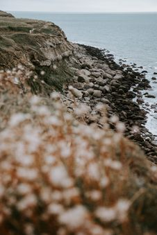 Free Selective Focus Photography Of Seashore With Stones Near Sea Royalty Free Stock Image - 127260466