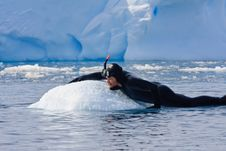 Free Diver On The Ice Stock Image - 12738671