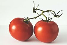 Free Two Red Tomatoes On White Surface Stock Image - 127315071