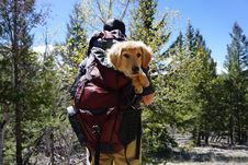 Free Man Carrying Dog On Red Backpack Stock Image - 127449991
