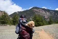 Free Person Carrying Yellow Labrador Retriever Puppy Inside Bag While Walked On Pathway In Front Of Mountain Royalty Free Stock Image - 127449996