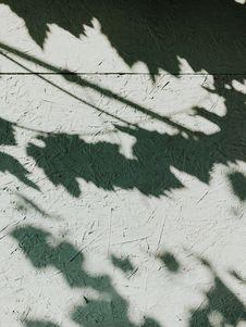 Free Photo Of Shadows On Wall Royalty Free Stock Photo - 127450255