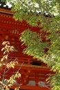 Free Autumn Stock Photos - 1283573