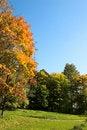 Free Golden Autumn Royalty Free Stock Photos - 1286618