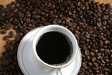 Free Coffee A Break Stock Photography - 1282892