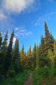 Free Mountain Landscape Royalty Free Stock Image - 1284456