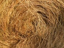 Free Harvested Roll Of Straw Royalty Free Stock Photo - 1284645