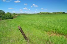 Rural Spring Countryside Royalty Free Stock Photography