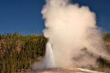 Free Old Faithful Royalty Free Stock Image - 1286246