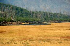 Free Yellowstone Stock Photos - 1286303